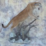 snarling mountain lion mount